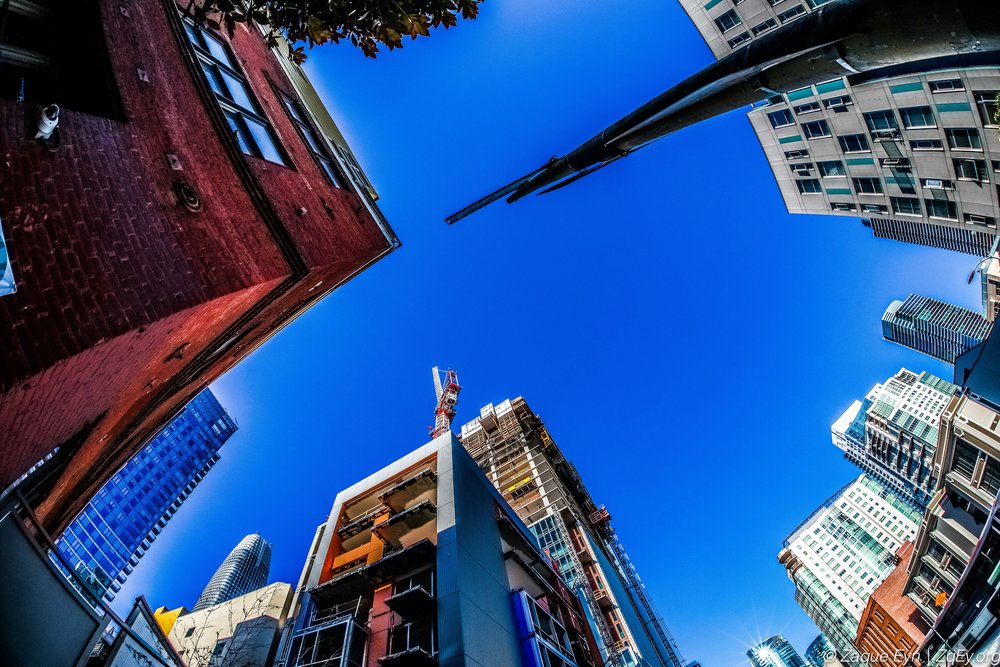 SF City Life Day 9-23.jpg