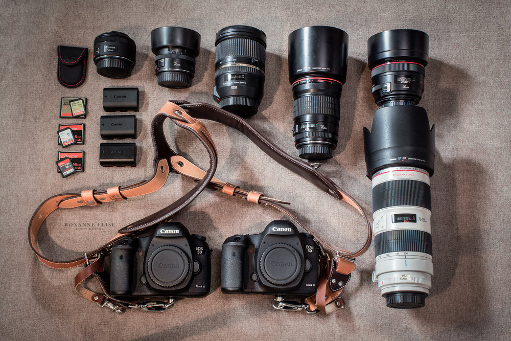In My Bag - Cameras: Canon 5D Mark III (x2)Lenses: Canon 70-200mm f/2.8L II, Canon 50mm f/1.2L, Canon 135mm f/2.0L, Tamron 24-70mm f/2.8, Canon 35mm f/2.0, Canon 60mm macroAccessories: RL Handcrafts Clydesdale Pro DLX (dual camera harness)