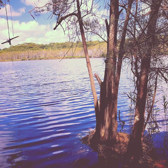 This place is magical. The birds sing, the water gently ripples and the trees whisper. This is the tea tree lake, a sacred Indigenous Australian womens lake and bathing in her waters is the perfect seal to our weekend of connection and ceremony. . Here there is a special peaceful suspension of time. As you glide in, the water changes to a deep ochre, coloured by the native tea trees framing the lake, and lending their healing elixir to the water. . #magic #sacred #special #indigenouswomen #womenscircle #sacredmoon #yogaoffthemat #yoga #teatree #healingwaters #byronbay