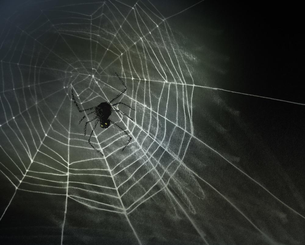 ARaff_foggycobweb.jpg