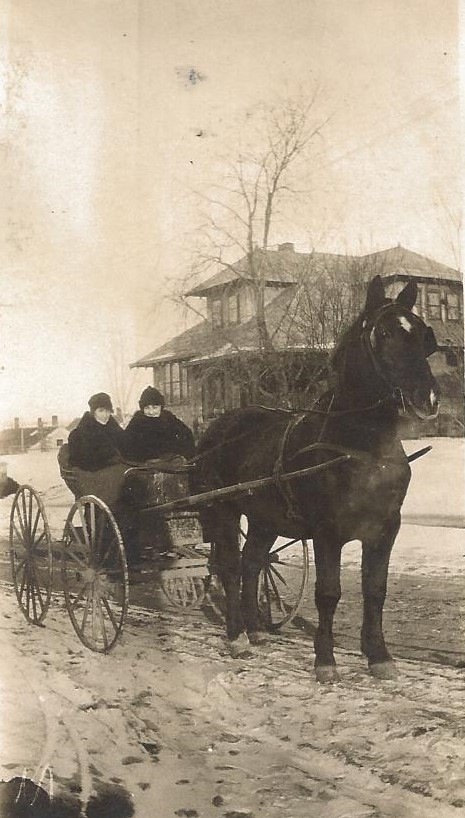 HORSE DRAWN CARRIAGE - 1901
