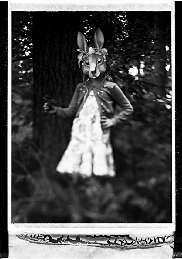 Deborah Parkin - rabbit.jpg