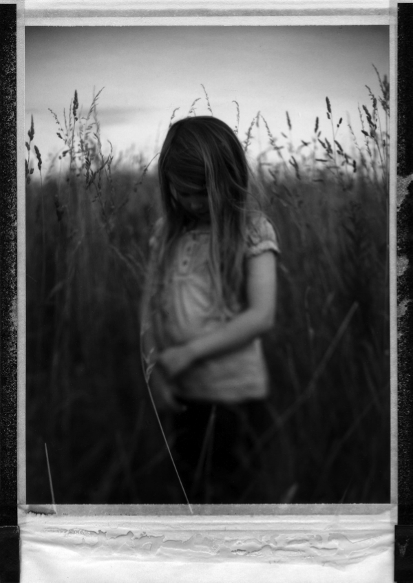 theflowerinthegrass.jpg