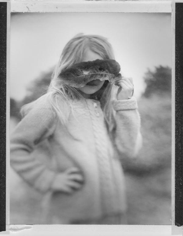 Deborah Parkin - Autumn Walk.jpg