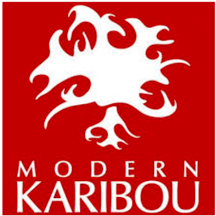 Interview with Anu Raina - BLOG: VELVET   blog.modernkaribou.ca