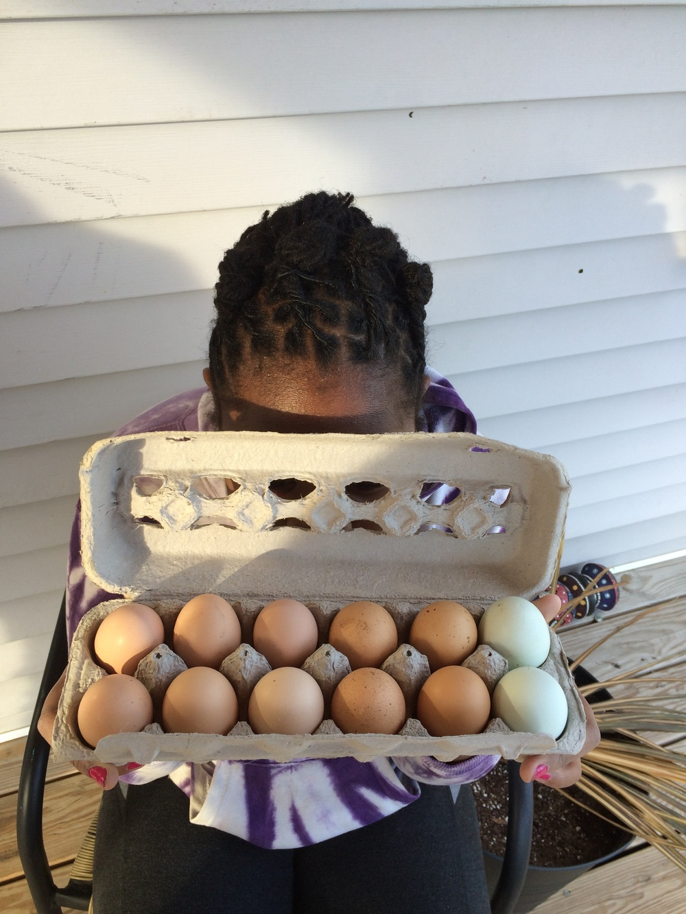 Amira enjoying the fruits of her labor in the chicken coop. Curiosity plus activity equals knowledge.