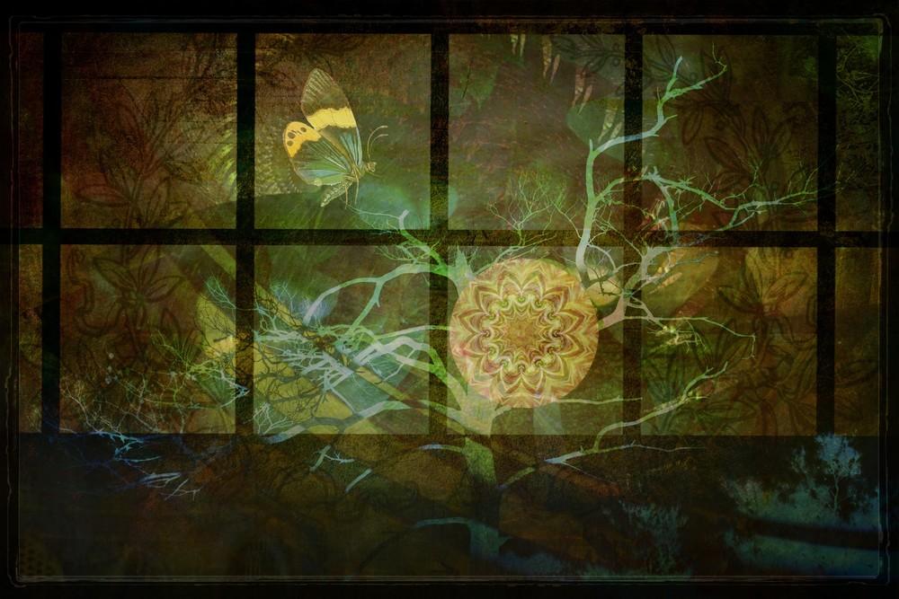 window-5sm.jpg