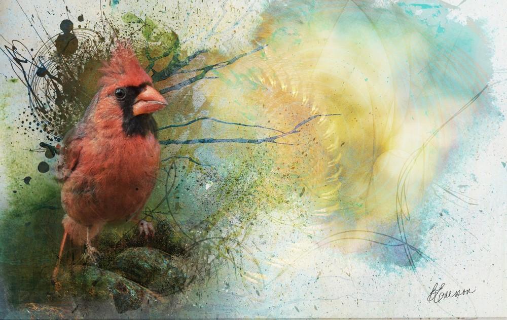 cardinal-sky-5-sm.jpg