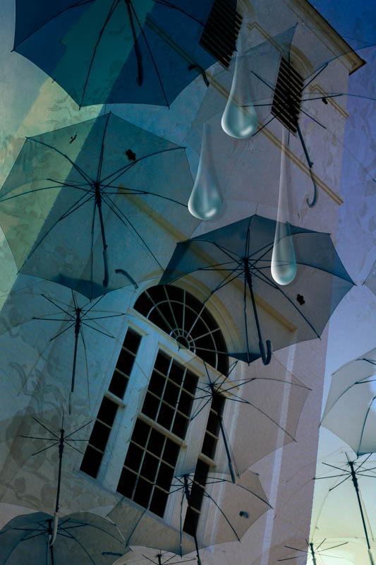 IMG_9581 raindrops.jpg