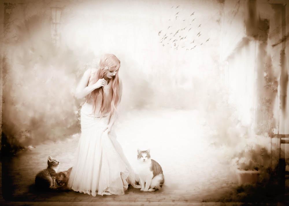 20161231_110540 cat lady 22.jpg