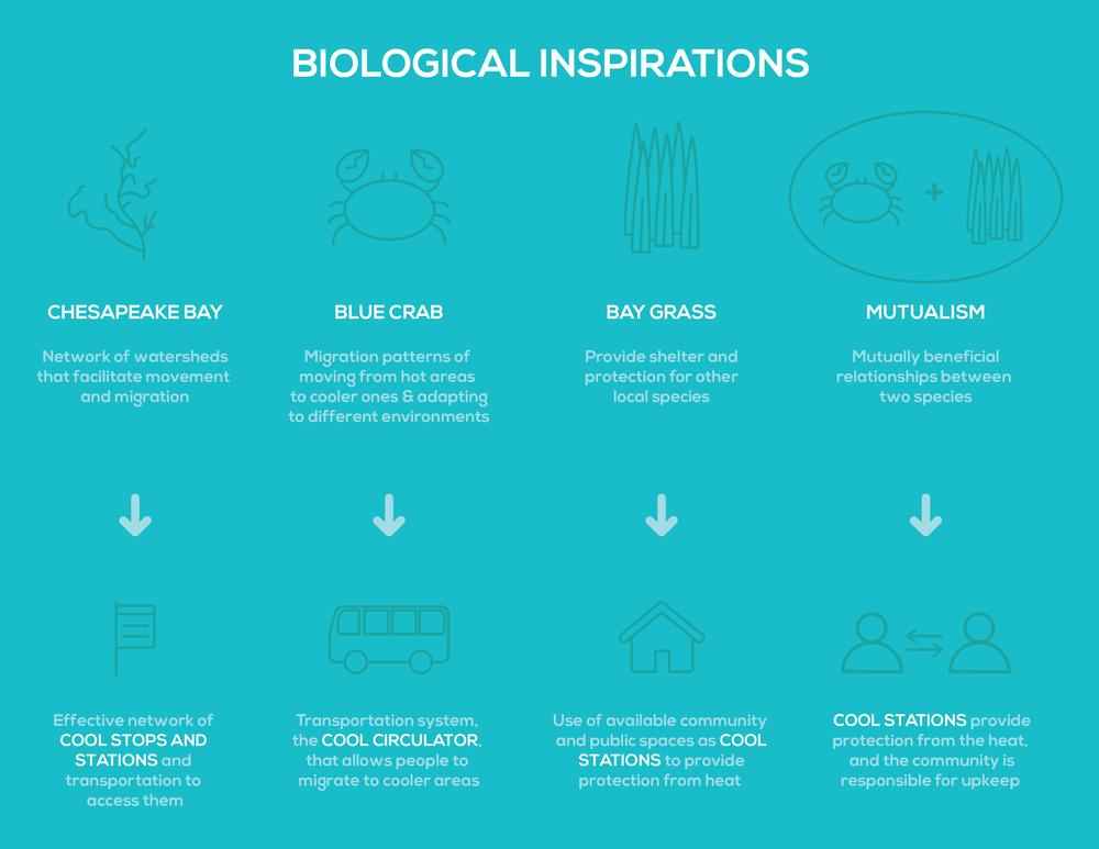 BiologicalInspiration-01.png