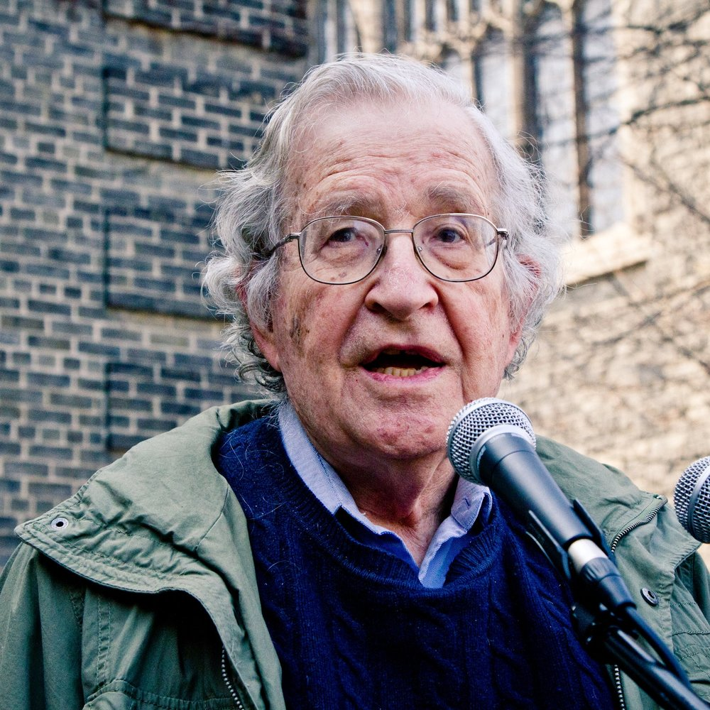 Noam Chomsky, Academic & Activist