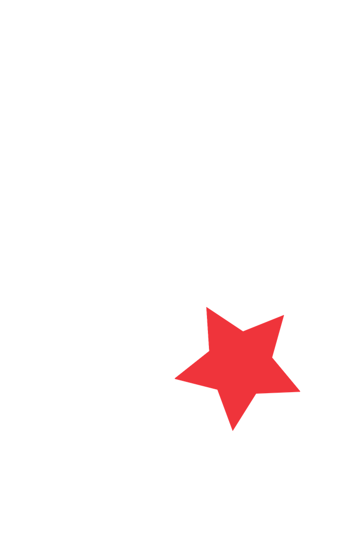small red star tall rectangle pinterest.png