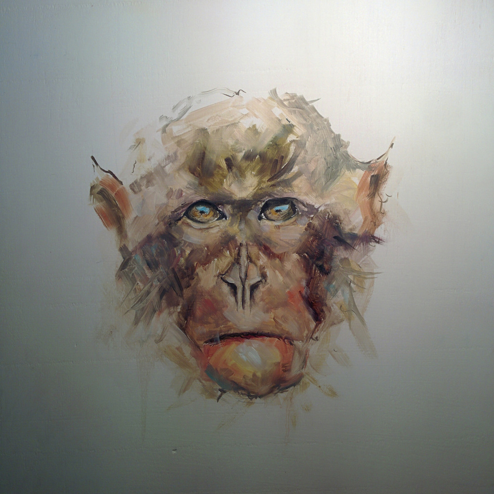 Macaque 1