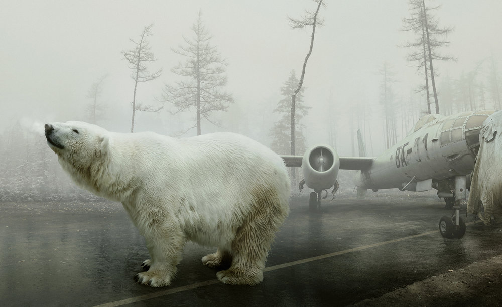 Bear With Me, Archival Pigment Print, 19,7 x 32,2 in/50 x 81,7 cm, Edition of 20