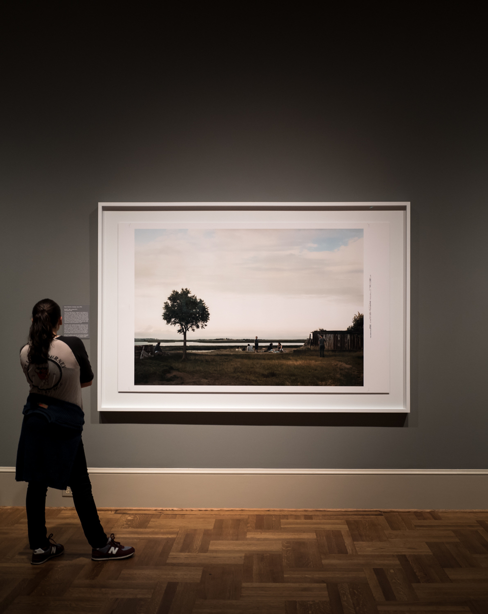 St. Louis Art Museum -  A Decade of Collecting Prints, Drawings, and Photographs