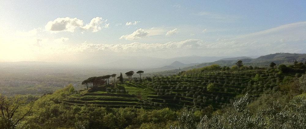 San-Baronto-Vista-1600