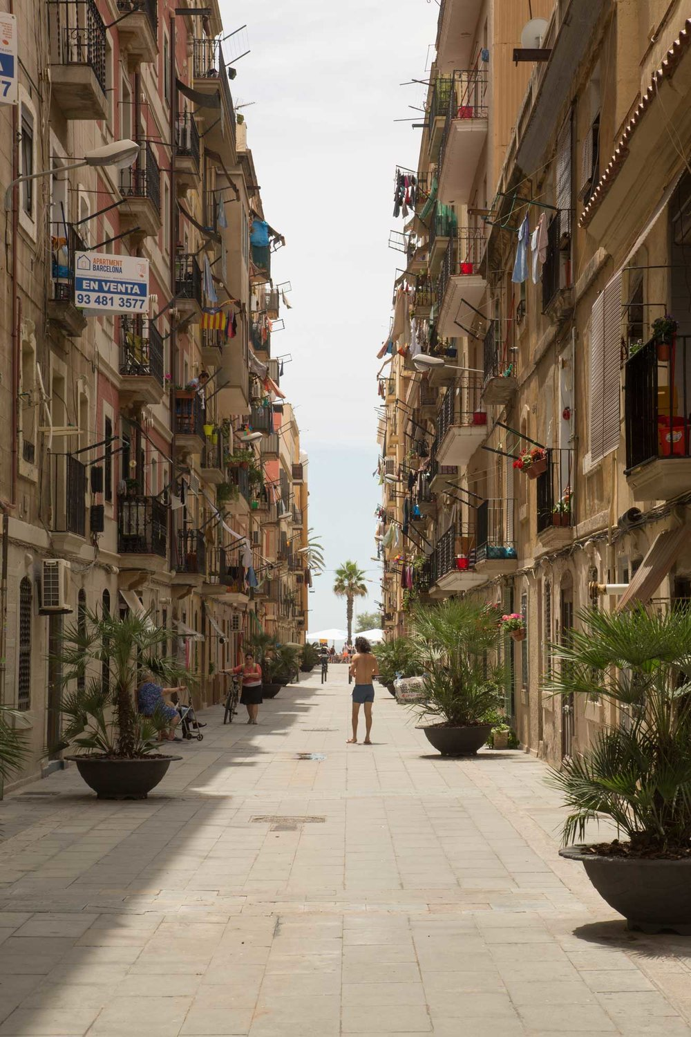 2014 — Between the rows. July in Barceloneta.
