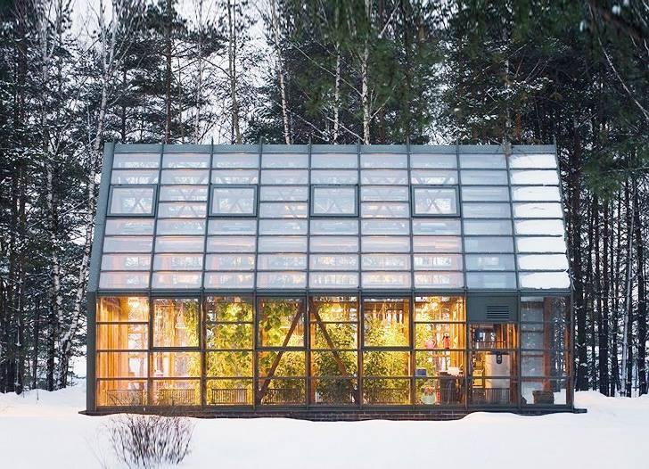 winter greenhouse.jpg