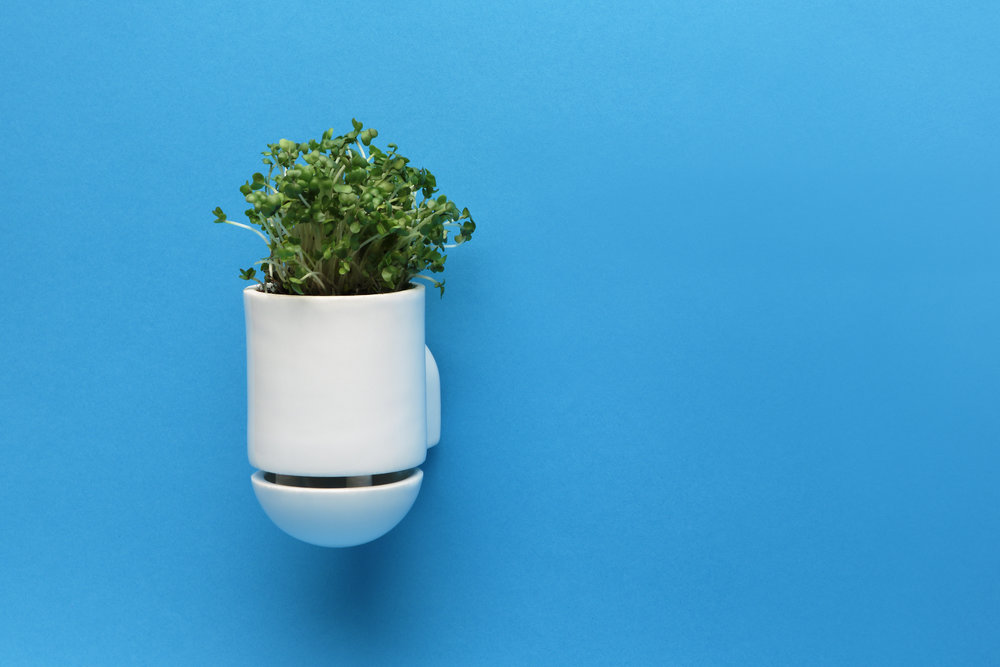 The microgreens planter is designed to self-water, and fits over a custom-made cabinet knob (not pictured) that turns it into a hanging pot and a kitchen handle at the same time.