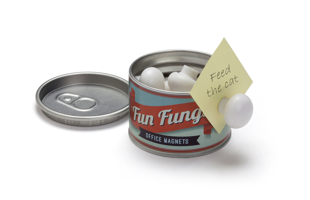 fun-fungi-2.jpg