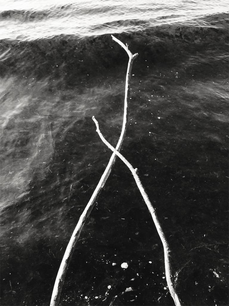 X_rising_tide.jpg
