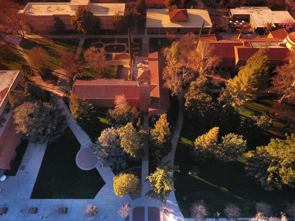 CSU Chico
