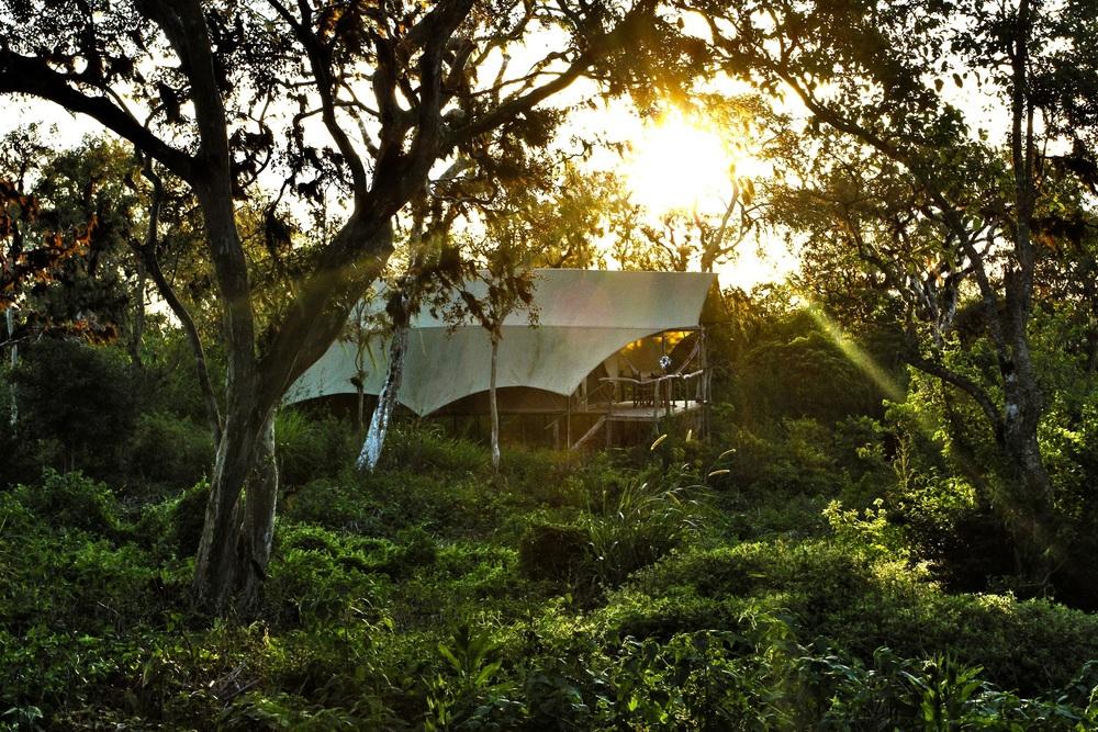Tent Exterior GSC (10).jpg
