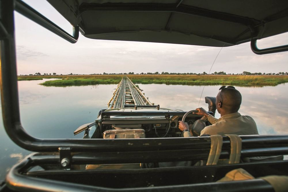 _Copyright_Beverly_Joubert_Duba_Safari_Botswana_3980 copy.jpg