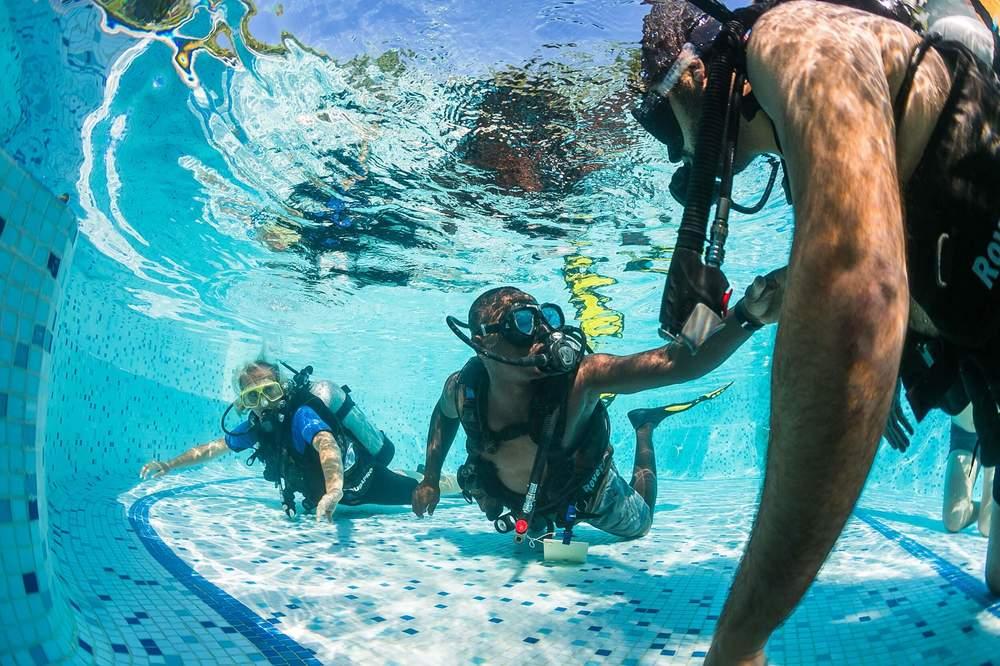 DivingPoolManta.jpg