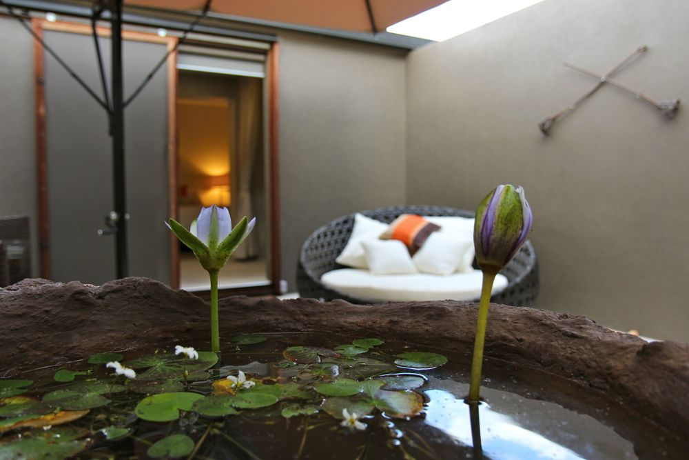 Lodge - Suite Courtyard with Lilies 2.jpg