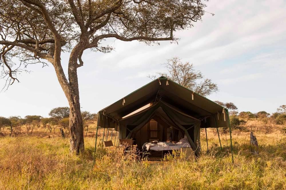 Lamai Serengeti (3).jpg
