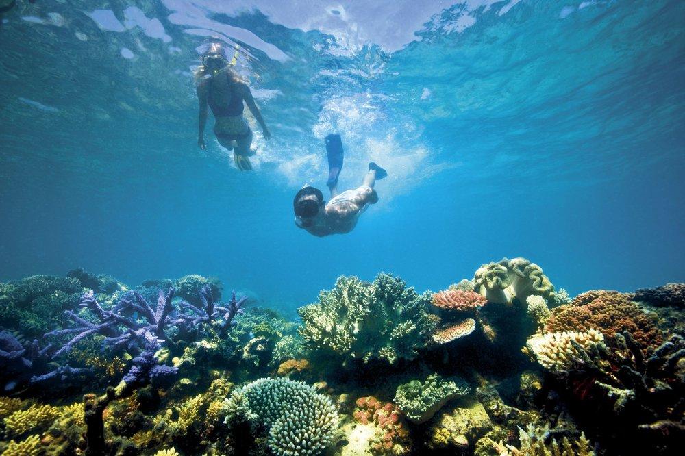 Lizard-Island_Great-Barrier-Reef_Snorkelling.jpg