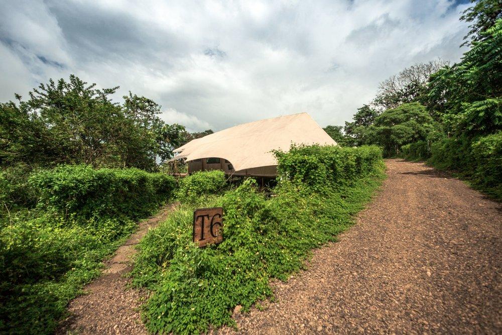 Tent Exterior GSC (15).jpg