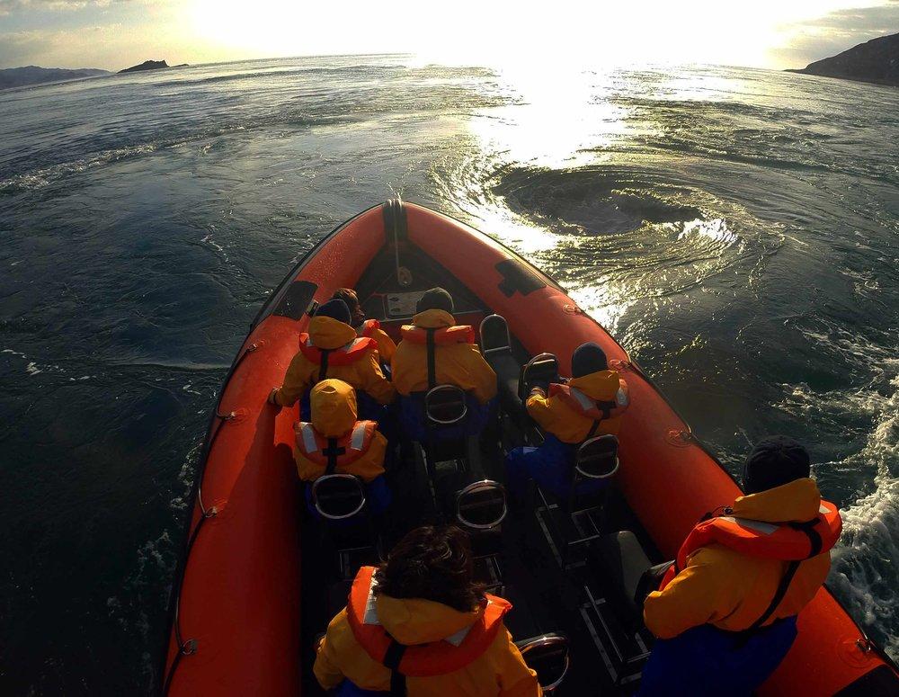 Overnight kayaking west coast (3).jpg