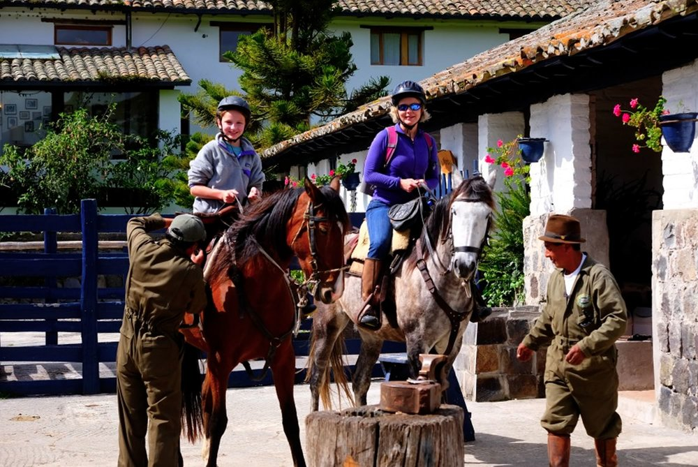 family_horse.jpg