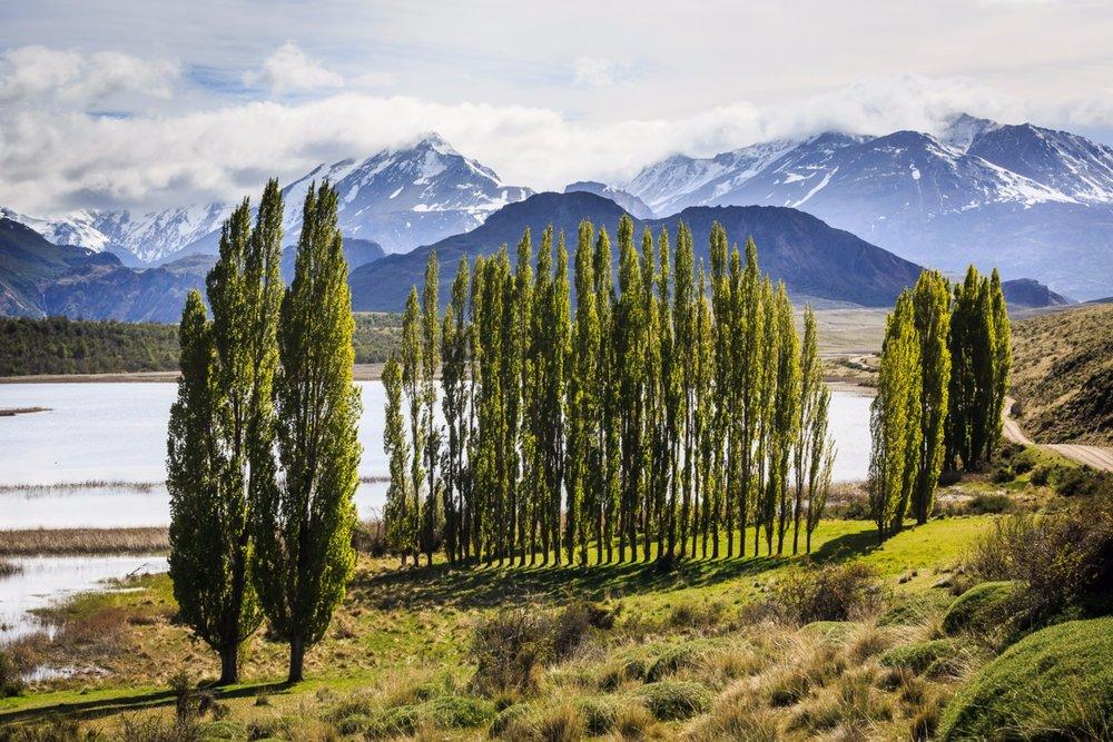 Patagonia Park 1.jpg