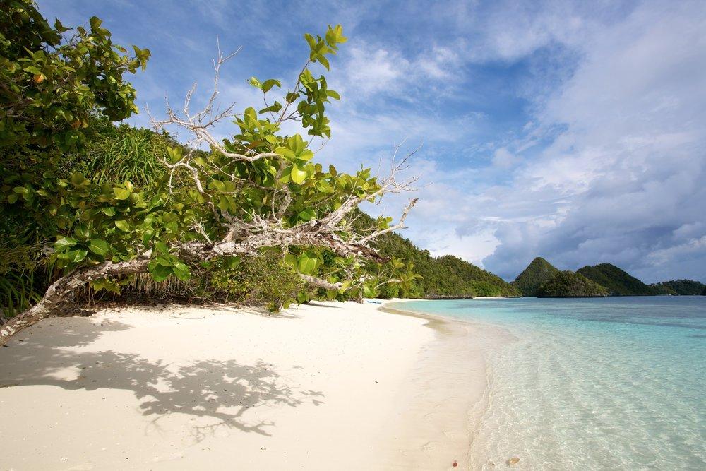 Pulau Wayag 2.jpg