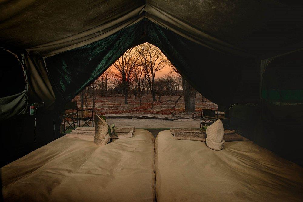 Hyena Pan - Tent Interior.jpg