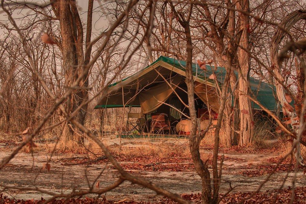 Hyena Pan - Tent.jpg