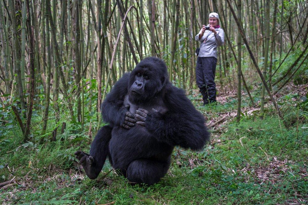 Rwanda-308.jpg