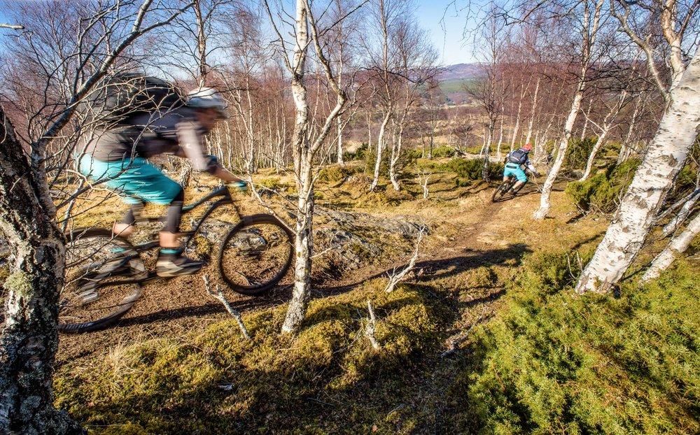 H+I Adventures Cairngorms Scotland-18.jpg