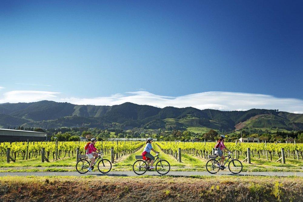 Winery Biking.jpg