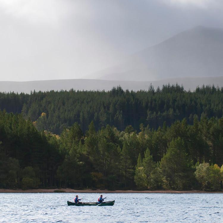 Photo by Wilderness Scotland
