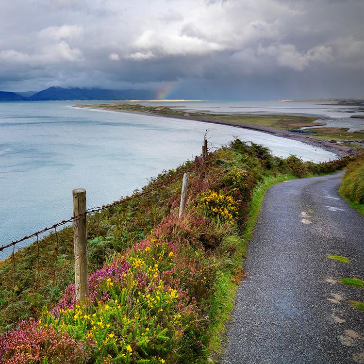 Photo by Wilderness Ireland