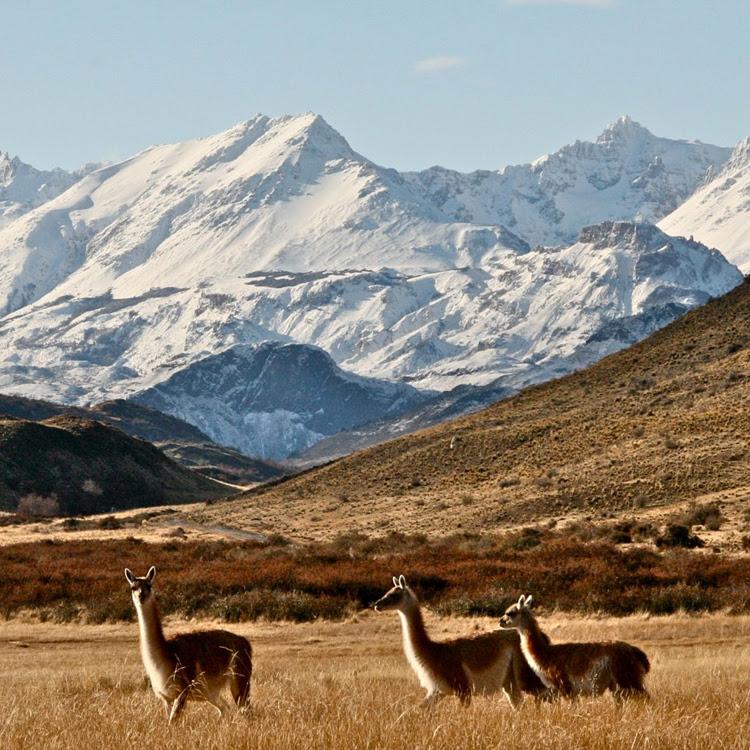 Patagonia | Torres del Paine
