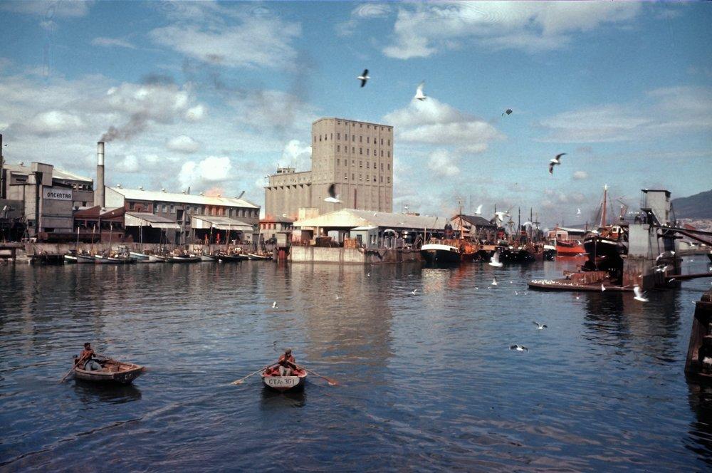 This wonderful image was taken in 1955 by Willie Werth.jpg
