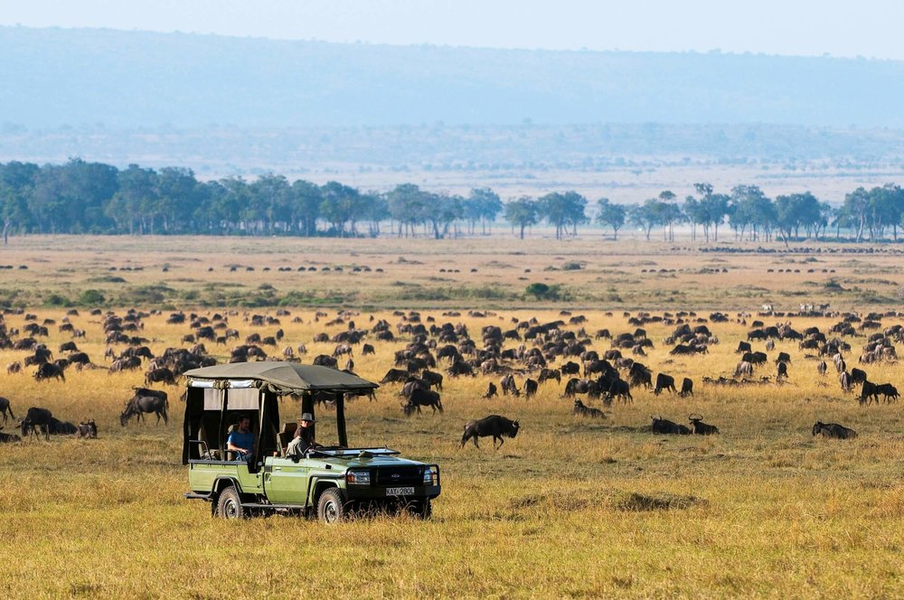 MaraExpeditionCamp-Safari-Experience-GreatPlainsConservation-7.jpg