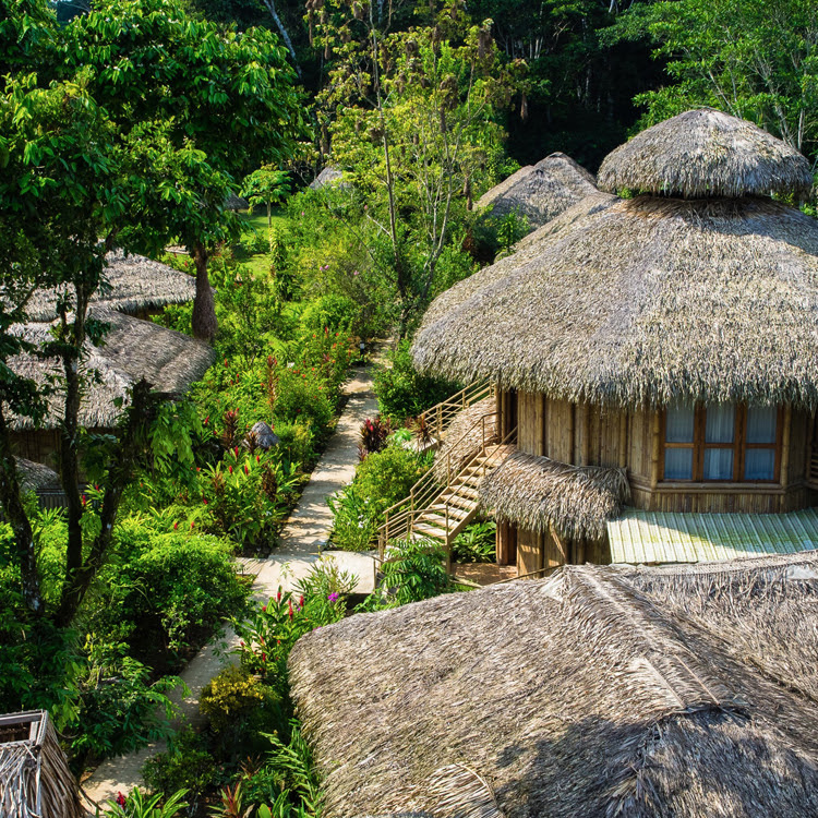 Amazon base camp | La Selva Amazon Ecolodge
