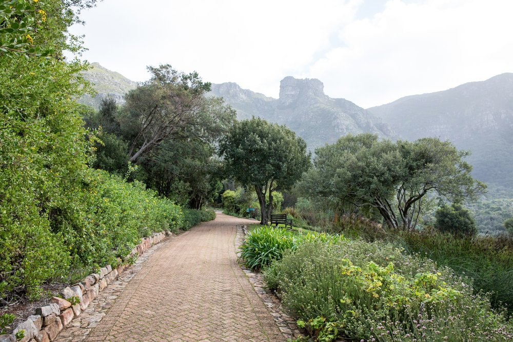 Africa - Cape Town-1038.jpg